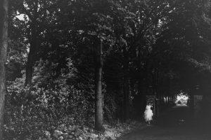Bruidsfotograaf Heumen